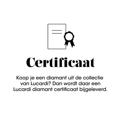 Diamond Luxury oorbellen - certificaat__1)